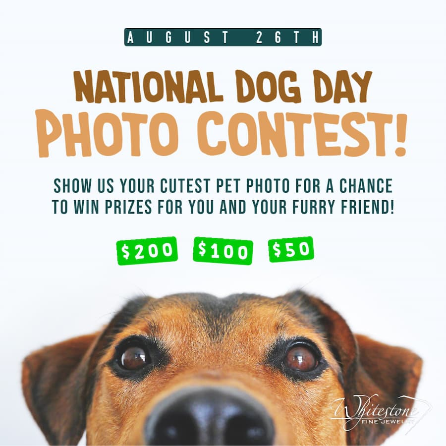 National Dog Day Photo Contest